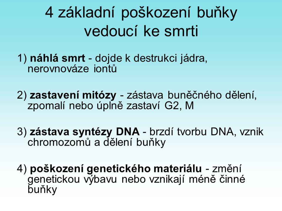 4 základní poškození buňky vedoucí ke smrti 1) náhlá smrt - dojde k destrukci jádra, nerovnováze iontů 2) zastavení mitózy - zástava buněčného dělení,