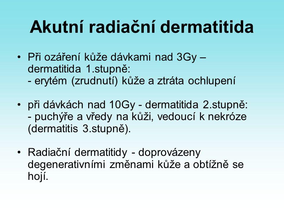 Akutní radiační dermatitida Při ozáření kůže dávkami nad 3Gy – dermatitida 1.stupně: - erytém (zrudnutí) kůže a ztráta ochlupení při dávkách nad 10Gy