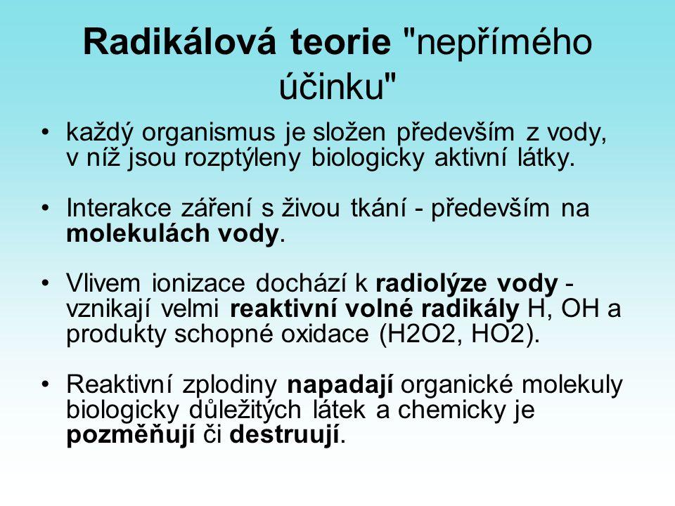 Radikálová teorie