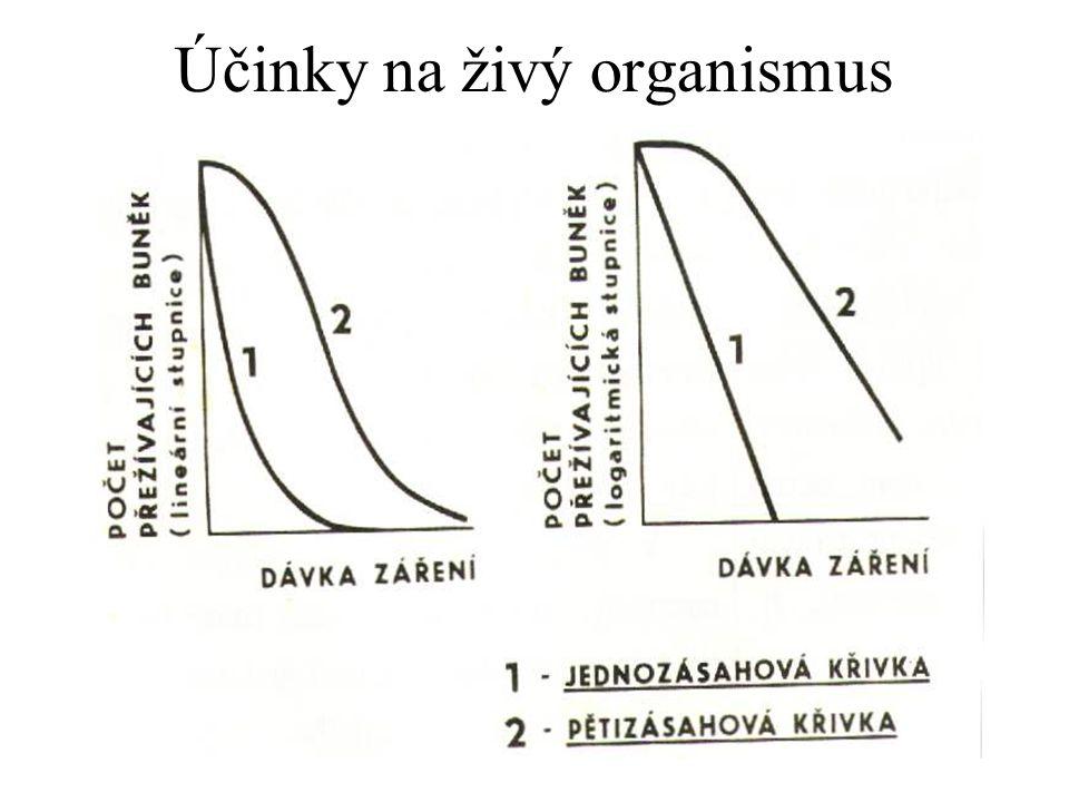 Účinky na živý organismus