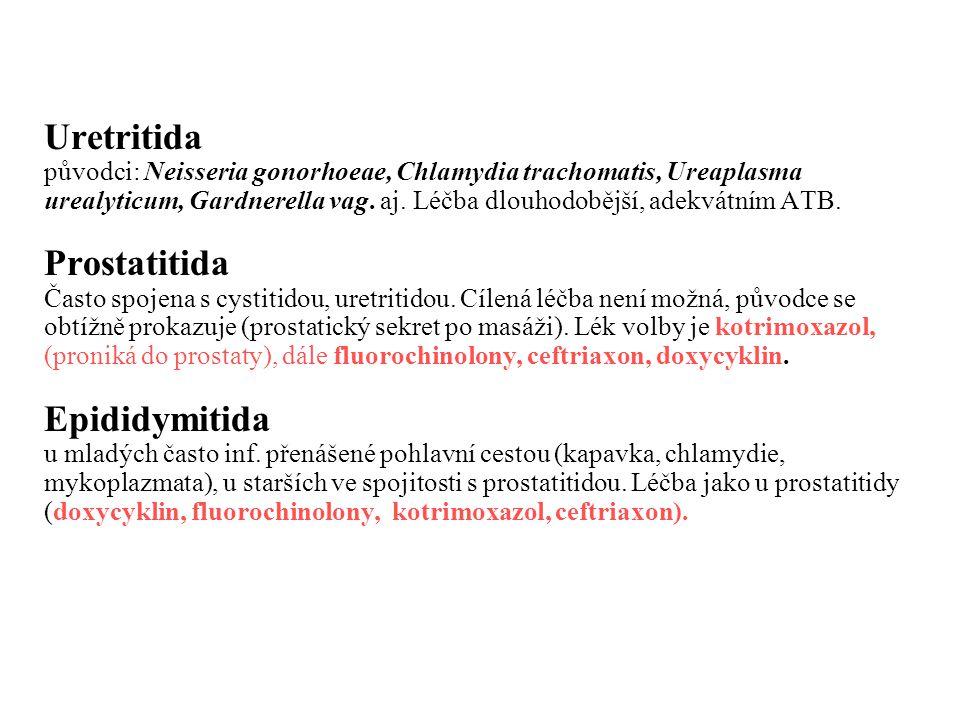 Uretritida původci: Neisseria gonorhoeae, Chlamydia trachomatis, Ureaplasma urealyticum, Gardnerella vag. aj. Léčba dlouhodobější, adekvátním ATB. Pro
