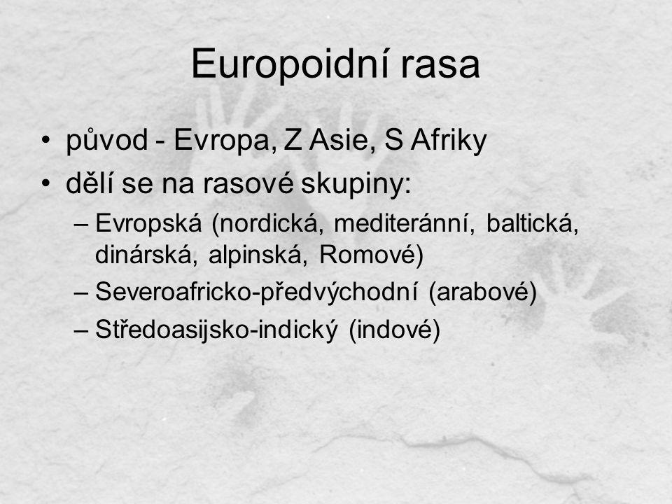 Europoidní rasa původ - Evropa, Z Asie, S Afriky dělí se na rasové skupiny: –Evropská (nordická, mediteránní, baltická, dinárská, alpinská, Romové) –Severoafricko-předvýchodní (arabové) –Středoasijsko-indický (indové)