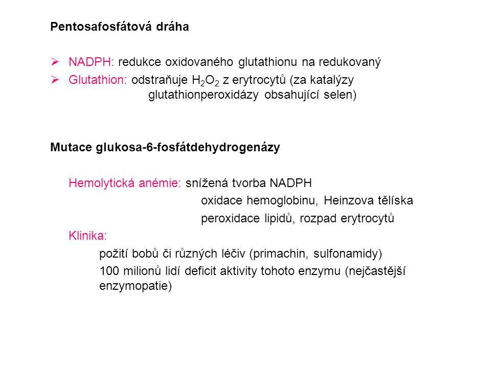Pentosafosfátová dráha  NADPH: redukce oxidovaného glutathionu na redukovaný  Glutathion: odstraňuje H 2 O 2 z erytrocytů (za katalýzy glutathionper