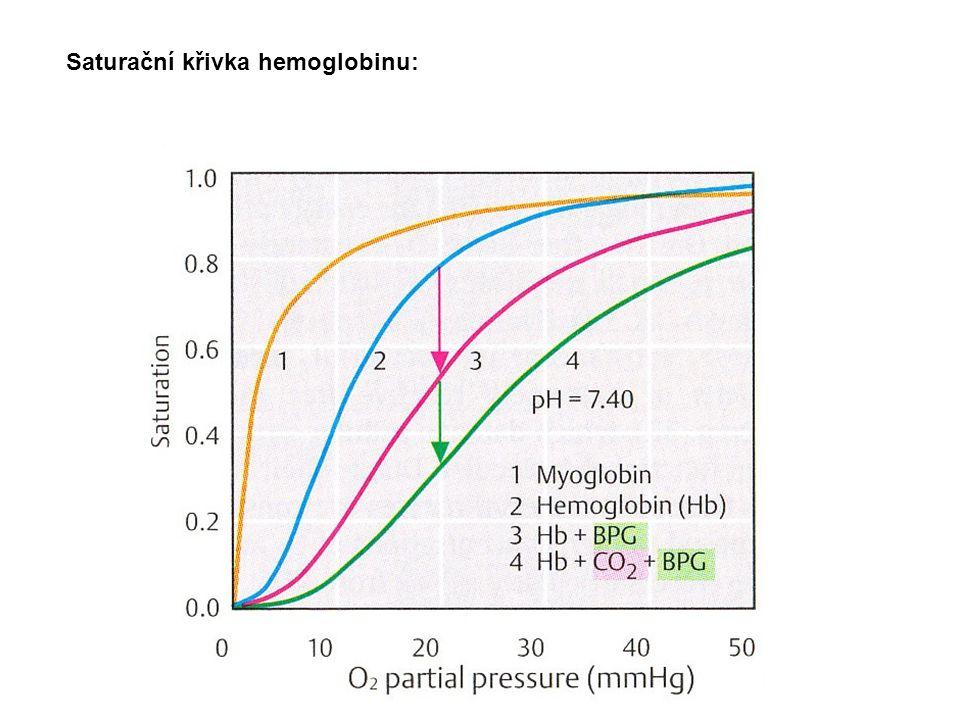 Autooxidace hemoglobinu 3% hemoglobinu každý den se oxiduje Konstantní uvolňování O 2 - Hem - Fe 2+ - O 2 Hem - Fe 3+ - O 2 - Hem – Fe 2+ - O 2 Hem - Fe 3+ + O 2 - Methemoglobinreduktáza Redukce methemoglobinu FAD, cytochrom b 5 a NADH (z glykolýzy) Methemoglobinemie 1.