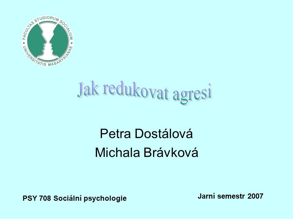 Petra Dostálová Michala Brávková PSY 708 Sociální psychologie Jarní semestr 2007