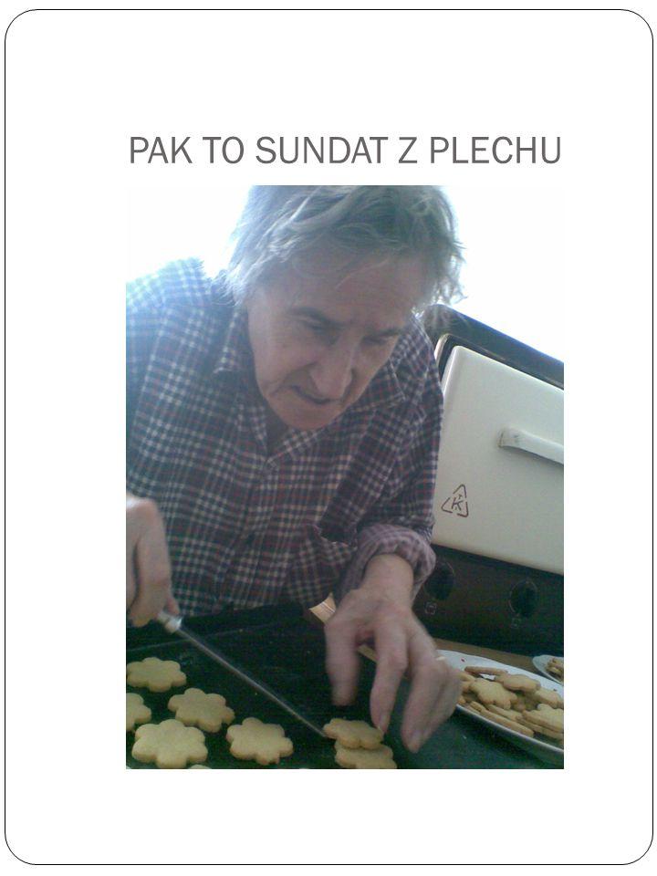 PAK TO SUNDAT Z PLECHU