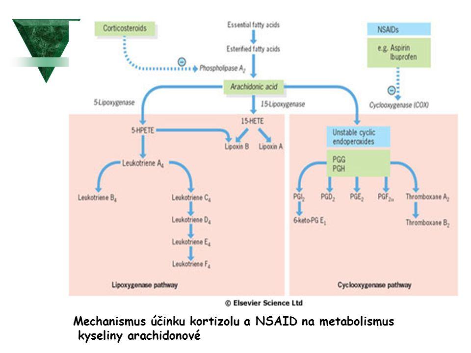 Mechanismus účinku kortizolu a NSAID na metabolismus kyseliny arachidonové