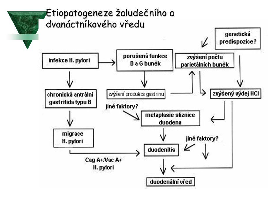 Etiopatogeneze žaludečního a dvanáctníkového vředu