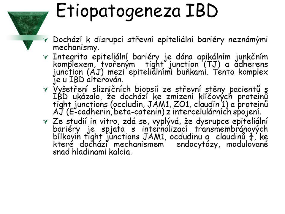 Etiopatogeneza IBD  Dochází k disrupci střevní epiteliální bariéry neznámými mechanismy.
