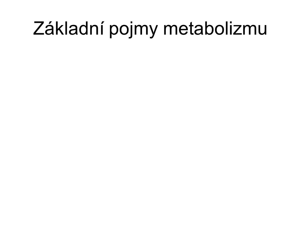 Základní pojmy metabolizmu