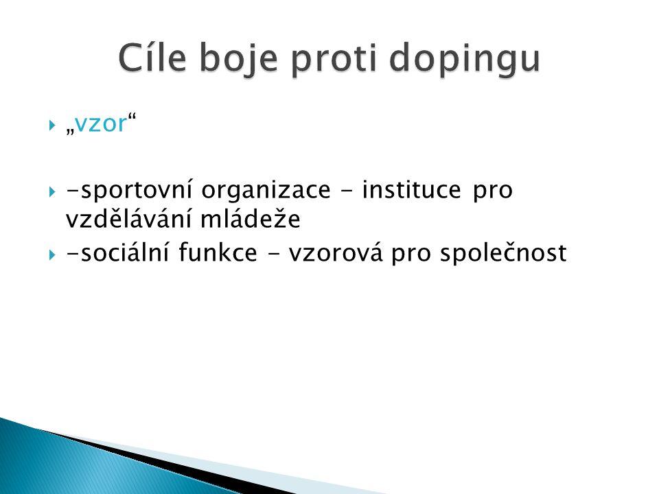 """ """"vzor""""  -sportovní organizace - instituce pro vzdělávání mládeže  -sociální funkce - vzorová pro společnost"""