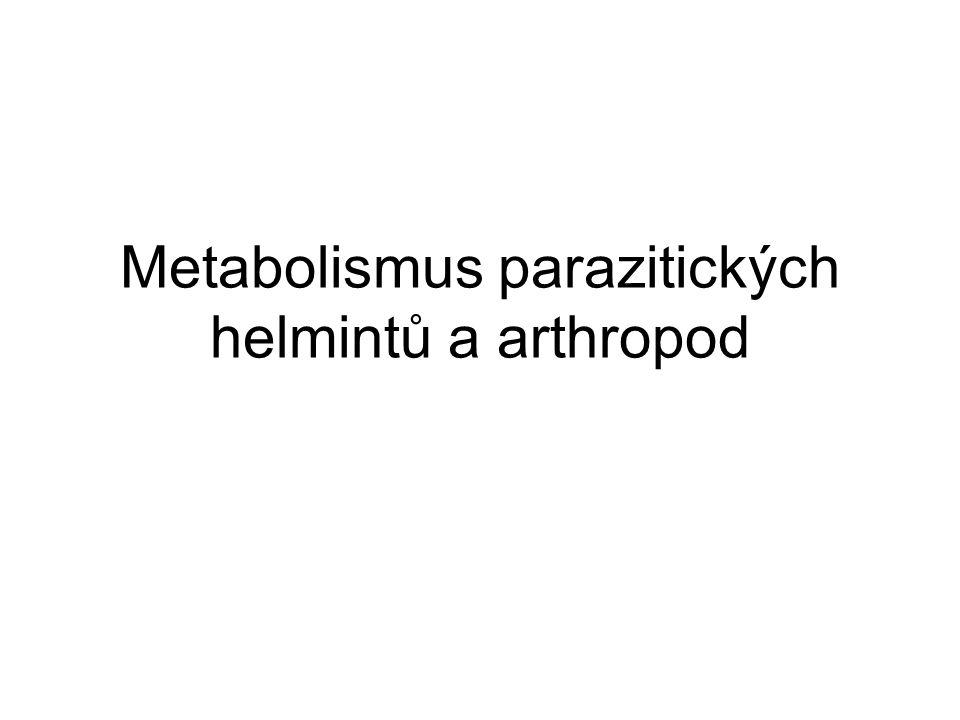 """Helminti Nematoda, trematoda, cestoda Krevní/tkáňoví X """"lumenální Dokáží zpracovat glykogen Dospělci nemají glukoneogenezi Filarie + schistosomy dokáží využívat AAs Během vývoje opouštějí aerobní mitochondrii (TCA, IV) A."""