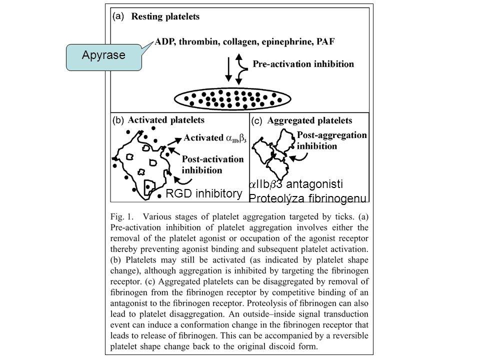 Apyrase RGD inhibitory  IIb  3 antagonisti Proteolýza fibrinogenu