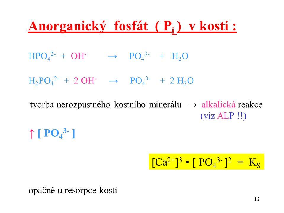 12 [Ca 2+ ] 3 [ PO 4 3- ] 2 = K S ↑ [ PO 4 3- ] Anorganický fosfát ( P i ) v kosti : HPO 4 2- + OH - → PO 4 3- + H 2 O H 2 PO 4 2- + 2 OH - → PO 4 3-