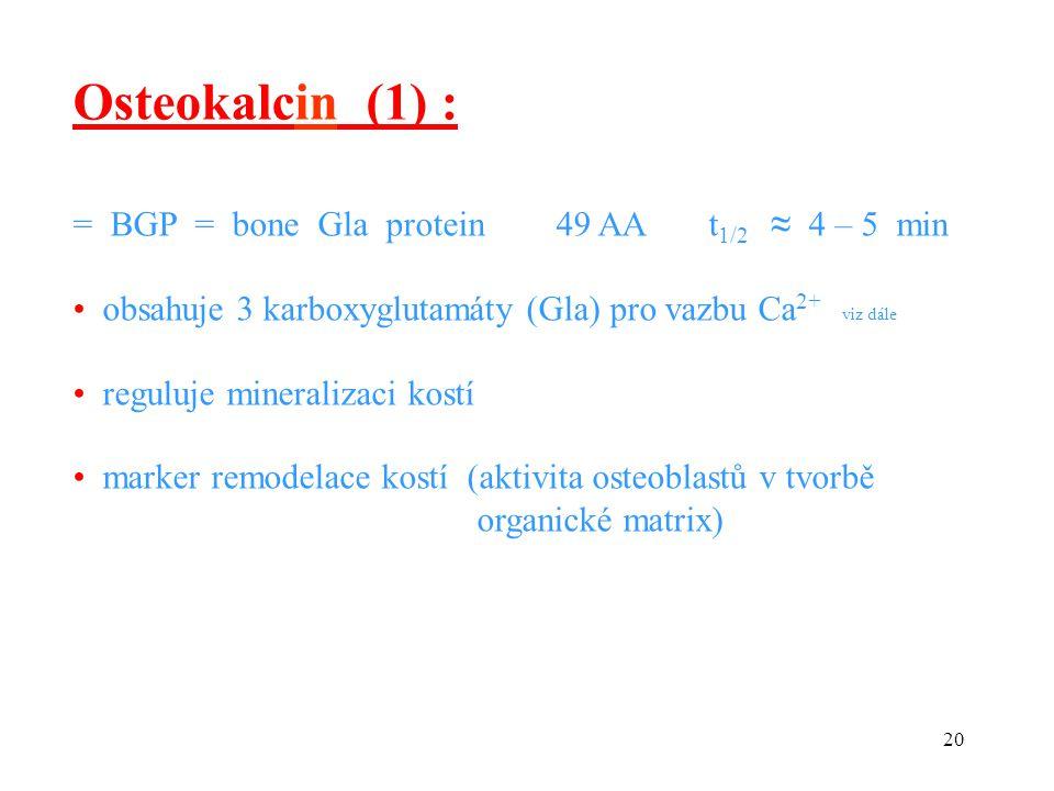 20 = BGP = bone Gla protein 49 AA t 1/2 ≈ 4 – 5 min obsahuje 3 karboxyglutamáty (Gla) pro vazbu Ca 2+ viz dále reguluje mineralizaci kostí marker remo