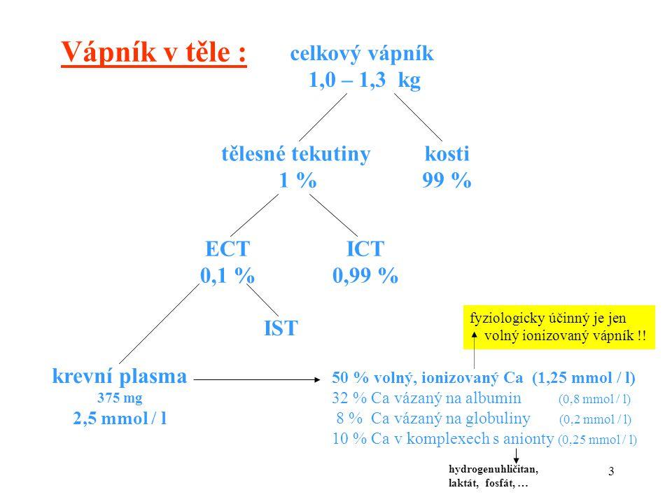 3 Vápník v těle : celkový vápník 1,0 – 1,3 kg tělesné tekutiny 1 % kosti 99 % ECT 0,1 % ICT 0,99 % krevní plasma 375 mg 2,5 mmol / l IST 50 % volný, i