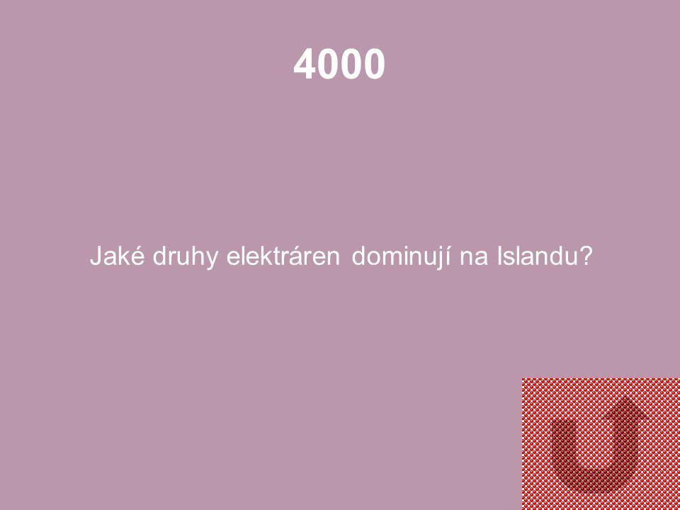3000 Jaké odvětví zajišťuje až 75 % exportu Islandu