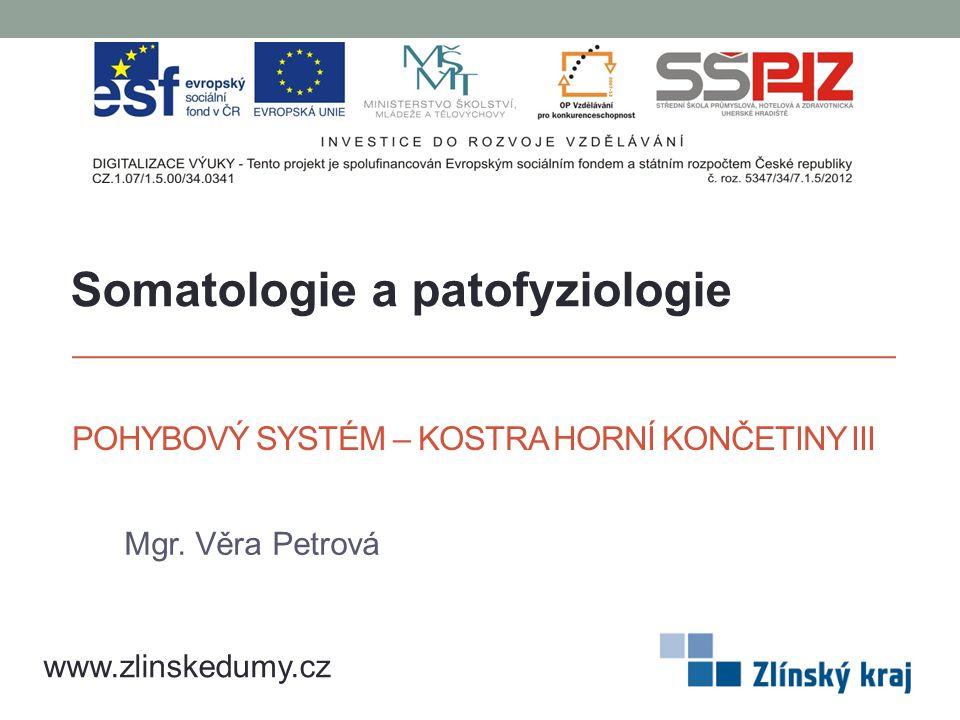 POHYBOVÝ SYSTÉM – KOSTRA HORNÍ KONČETINY III Mgr. Věra Petrová www.zlinskedumy.cz Somatologie a patofyziologie