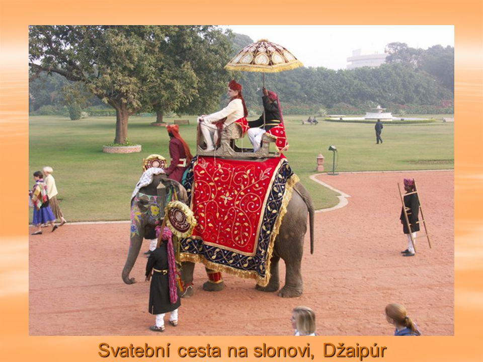 Svatební cesta na slonovi, Džaipúr