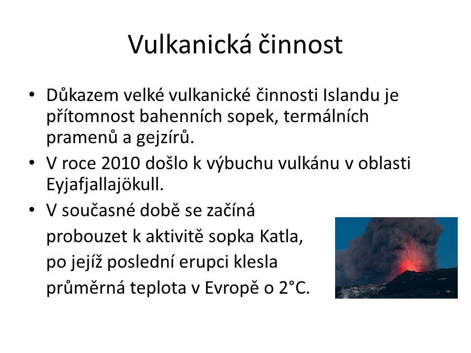 Vulkanická činnost Důkazem velké vulkanické činnosti Islandu je přítomnost bahenních sopek, termálních pramenů a gejzírů. V roce 2010 došlo k výbuchu