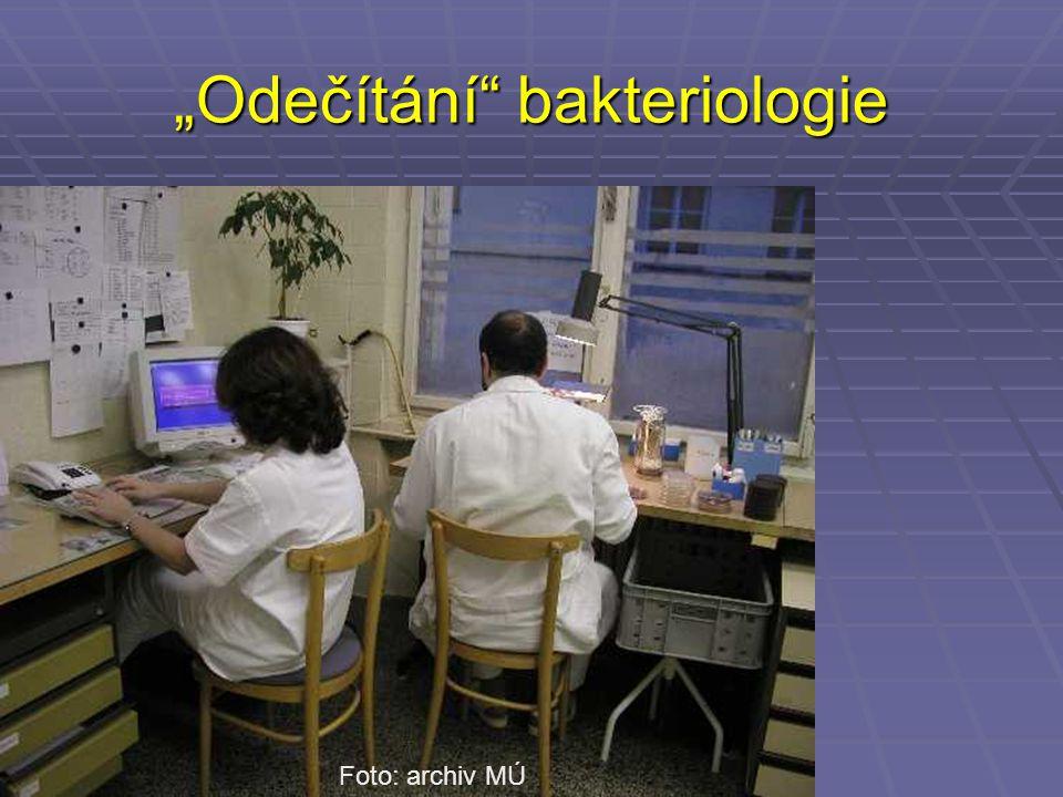 """""""Odečítání"""" bakteriologie Foto: archiv MÚ"""