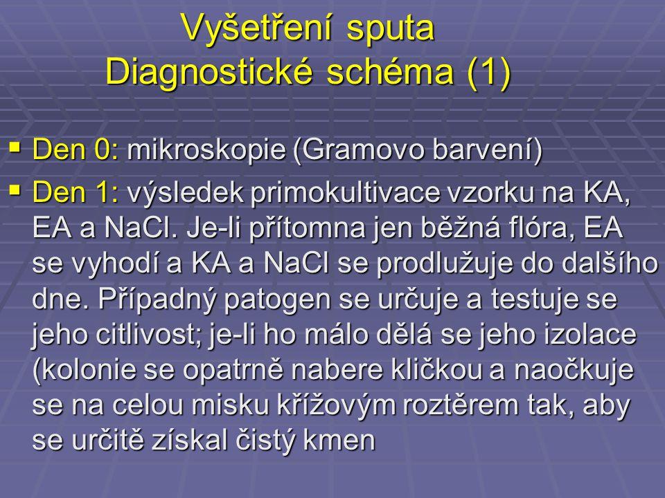 Vyšetření sputa Diagnostické schéma (1)  Den 0: mikroskopie (Gramovo barvení)  Den 1: výsledek primokultivace vzorku na KA, EA a NaCl. Je-li přítomn