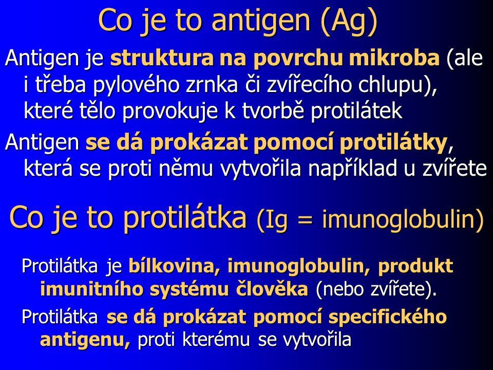 Co je to protilátka (Ig = imunoglobulin) Protilátka je bílkovina, imunoglobulin, produkt imunitního systému člověka (nebo zvířete). Protilátka se dá p