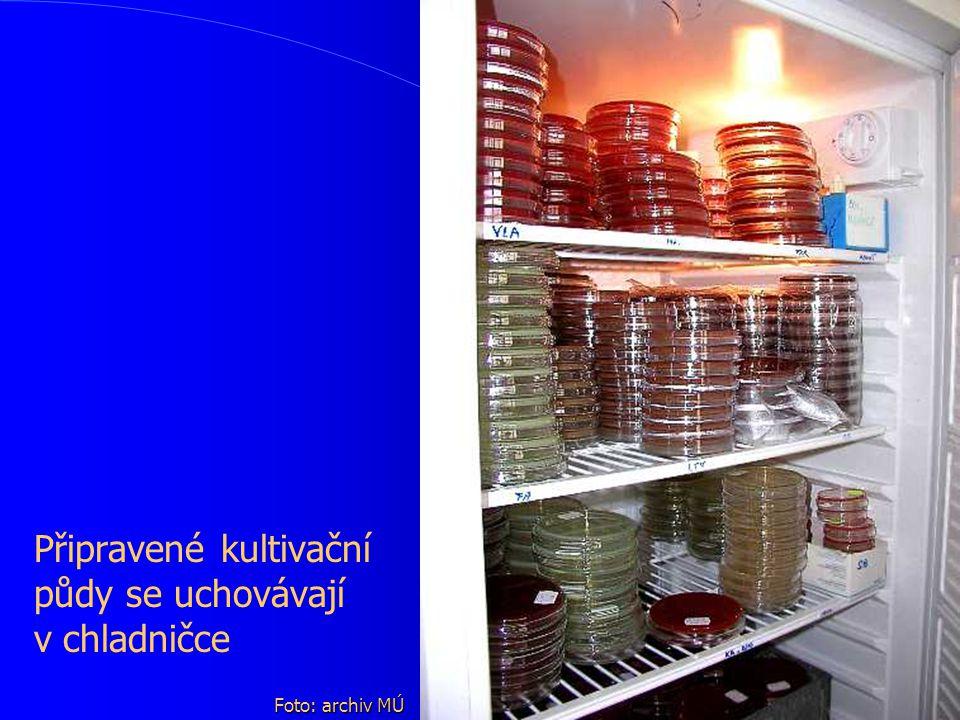 Připravené kultivační půdy se uchovávají v.chladničce Foto: archiv MÚ