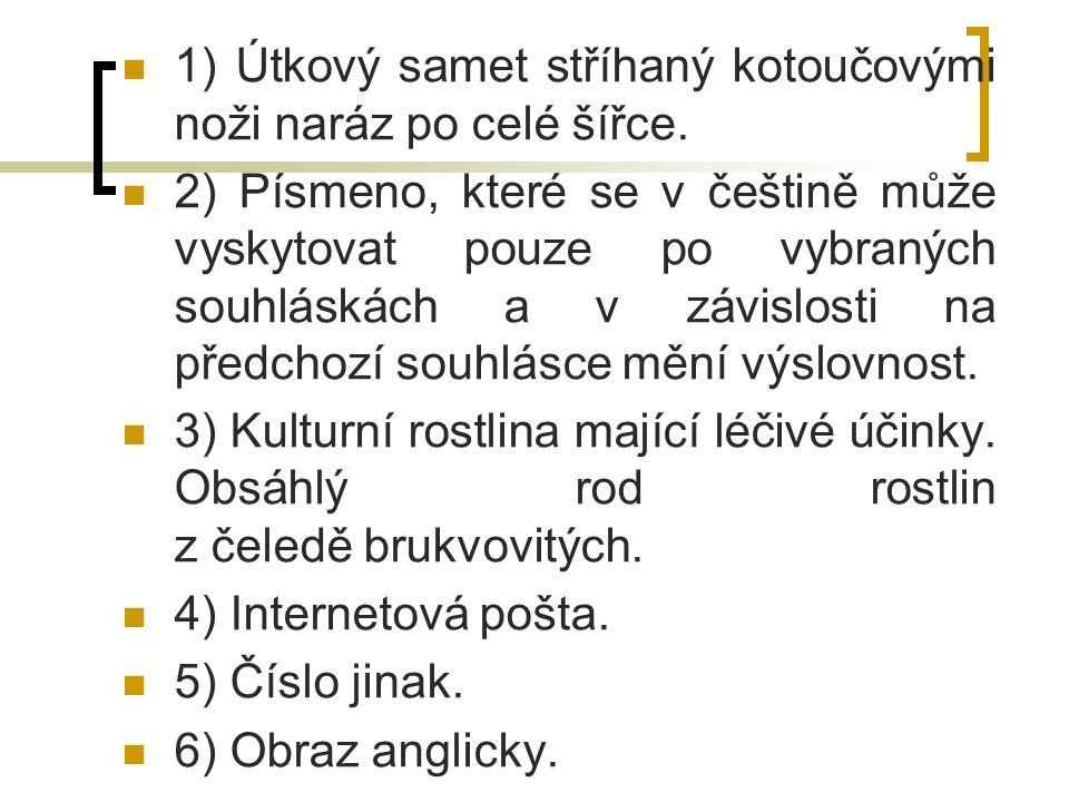 1) Útkový samet stříhaný kotoučovými noži naráz po celé šířce. 2) Písmeno, které se v češtině může vyskytovat pouze po vybraných souhláskách a v závis