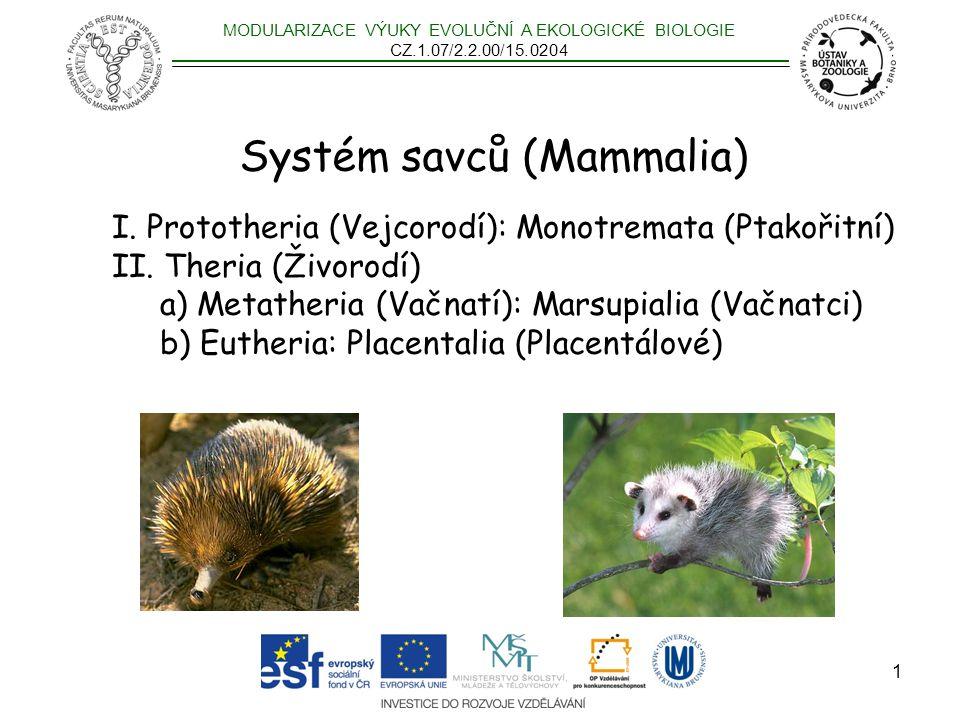 2 Monotremata Marsupialia Placentalia Teinolophos – 123Myr Sinodelphys – 125Myr Eomaia – 125Myr 170-190 Myr 167 Myr .