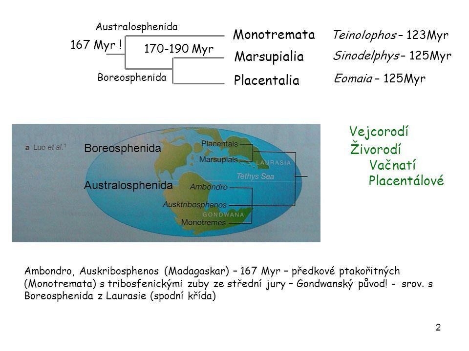 2 Monotremata Marsupialia Placentalia Teinolophos – 123Myr Sinodelphys – 125Myr Eomaia – 125Myr 170-190 Myr 167 Myr ! Boreosphenida Vejcorodí Živorodí