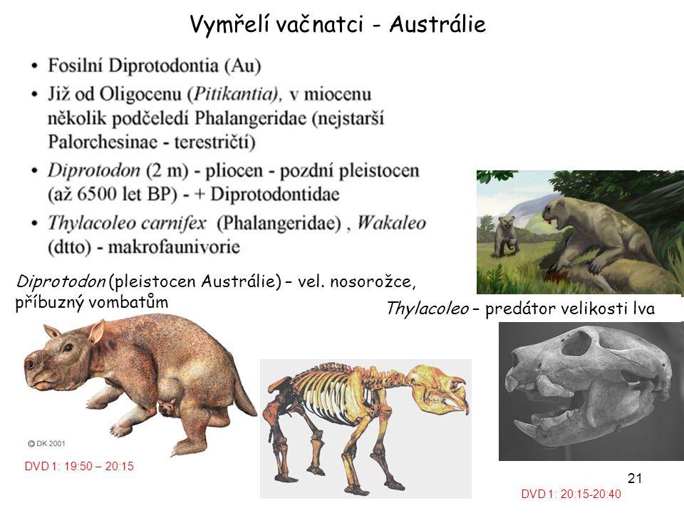 22 Procoptodon goliath - obří klokan, 3 m, 230 kg, pleistocen Austrálie Velcí vačnatci vymřeli v důsledku aridního klimatu na konci pleistocenu, vliv člověka (Aboroginci před 35 tisíci lety) – vypalování a lov.