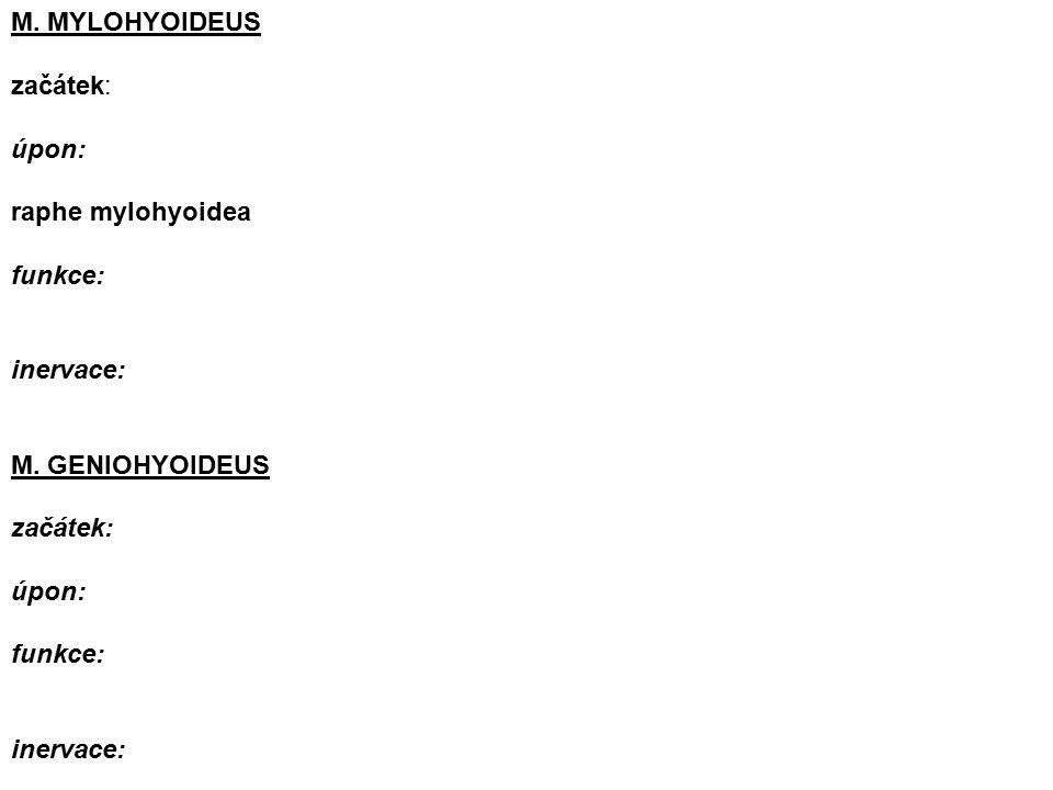 M. MYLOHYOIDEUS začátek: úpon: raphe mylohyoidea funkce: inervace: M.