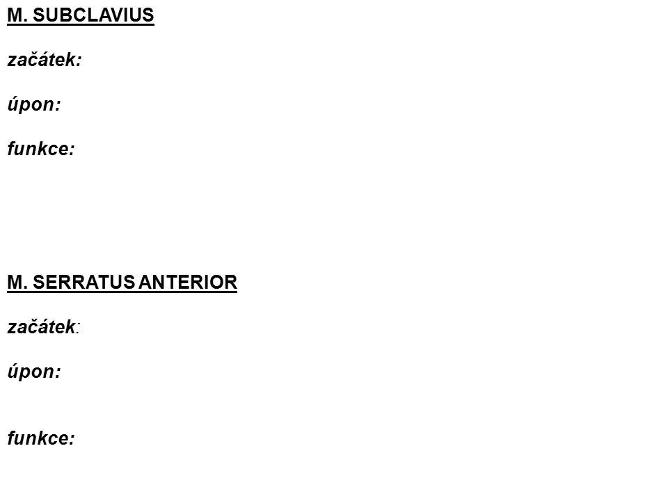 M. SUBCLAVIUS začátek: úpon: funkce: M. SERRATUS ANTERIOR začátek: úpon: funkce: