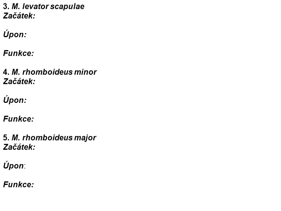 3. M. levator scapulae Začátek: Úpon: Funkce: 4.