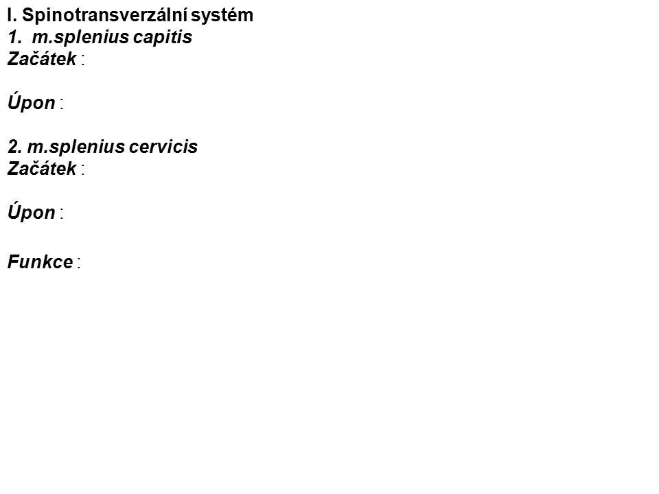 I. Spinotransverzální systém 1.m.splenius capitis Začátek : Úpon : 2.