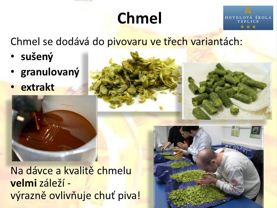 Chmel Chmel se dodává do pivovaru ve třech variantách: sušený granulovaný extrakt Na dávce a kvalitě chmelu velmi záleží - výrazně ovlivňuje chuť piva