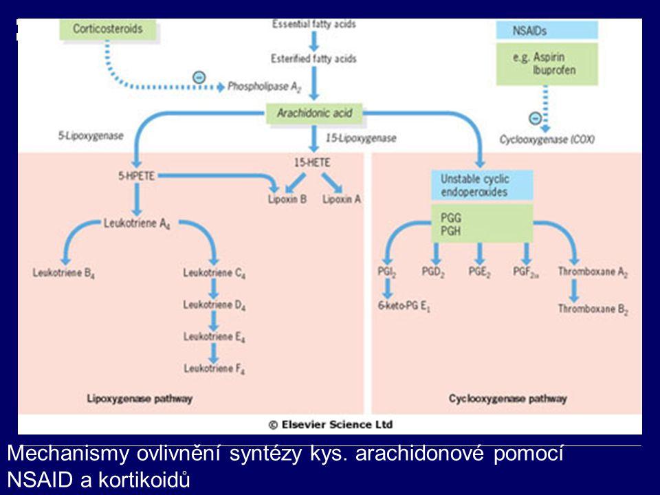 Mechanismy ovlivnění syntézy kys. arachidonové pomocí NSAID a kortikoidů