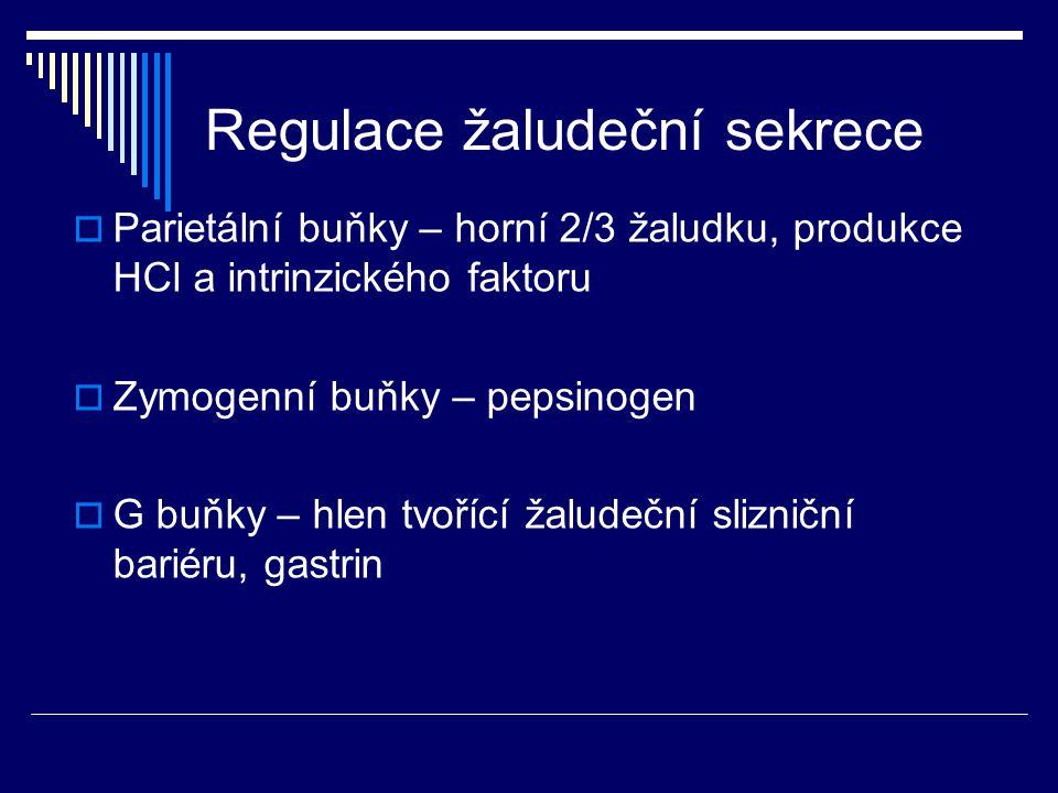 Regulace žaludeční sekrece  Parietální buňky – horní 2/3 žaludku, produkce HCl a intrinzického faktoru  Zymogenní buňky – pepsinogen  G buňky – hlen tvořící žaludeční slizniční bariéru, gastrin
