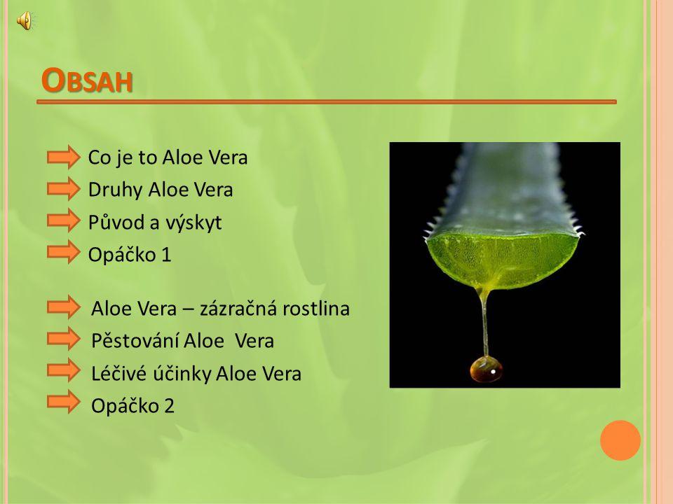 O BSAH Co je to Aloe Vera Druhy Aloe Vera Původ a výskyt Opáčko 1 Aloe Vera – zázračná rostlina Pěstování Aloe Vera Léčivé účinky Aloe Vera Opáčko 2