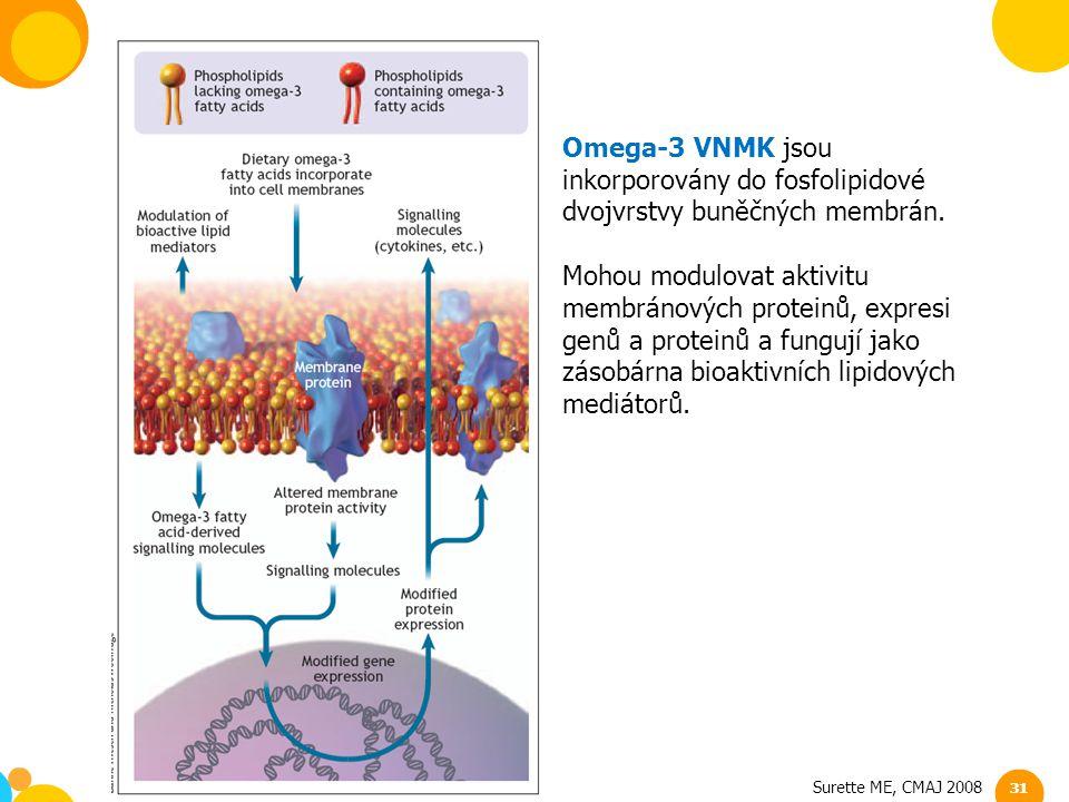 Surette ME, CMAJ 2008 Omega-3 VNMK jsou inkorporovány do fosfolipidové dvojvrstvy buněčných membrán. Mohou modulovat aktivitu membránových proteinů, e