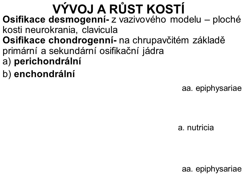 VÝVOJ A RŮST KOSTÍ a. nutricia aa. epiphysariae Osifikace desmogenní- z vazivového modelu – ploché kosti neurokrania, clavicula Osifikace chondrogenní