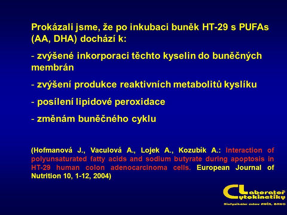 Prokázali jsme, že po inkubaci buněk HT-29 s PUFAs (AA, DHA) dochází k: - zvýšené inkorporaci těchto kyselin do buněčných membrán - zvýšení produkce r