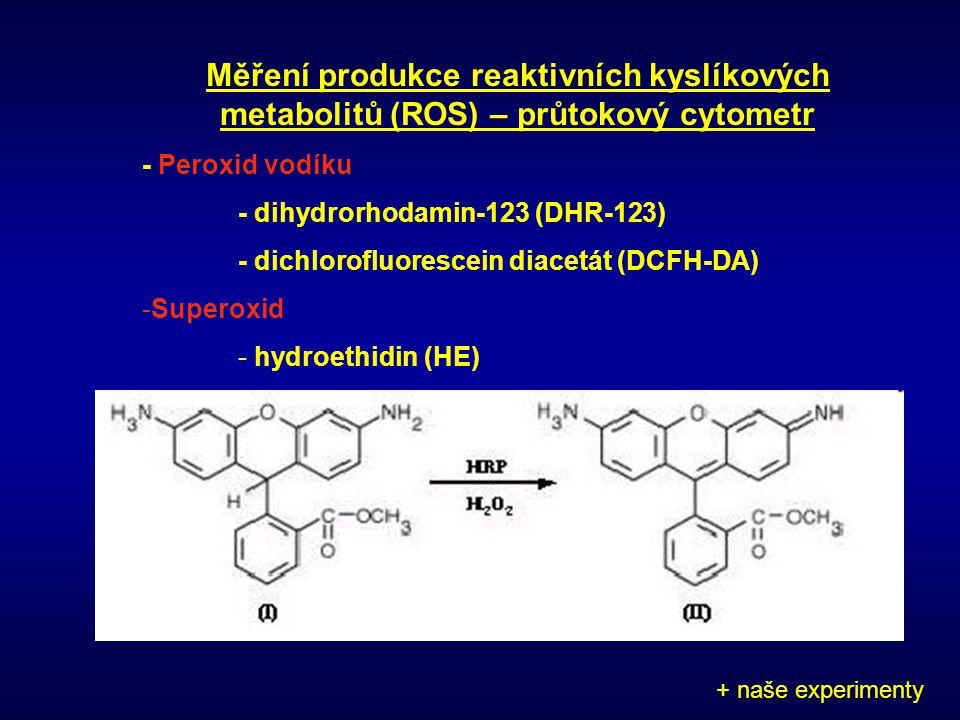 Měření produkce reaktivních kyslíkových metabolitů (ROS) – průtokový cytometr - Peroxid vodíku - dihydrorhodamin-123 (DHR-123) - dichlorofluorescein d