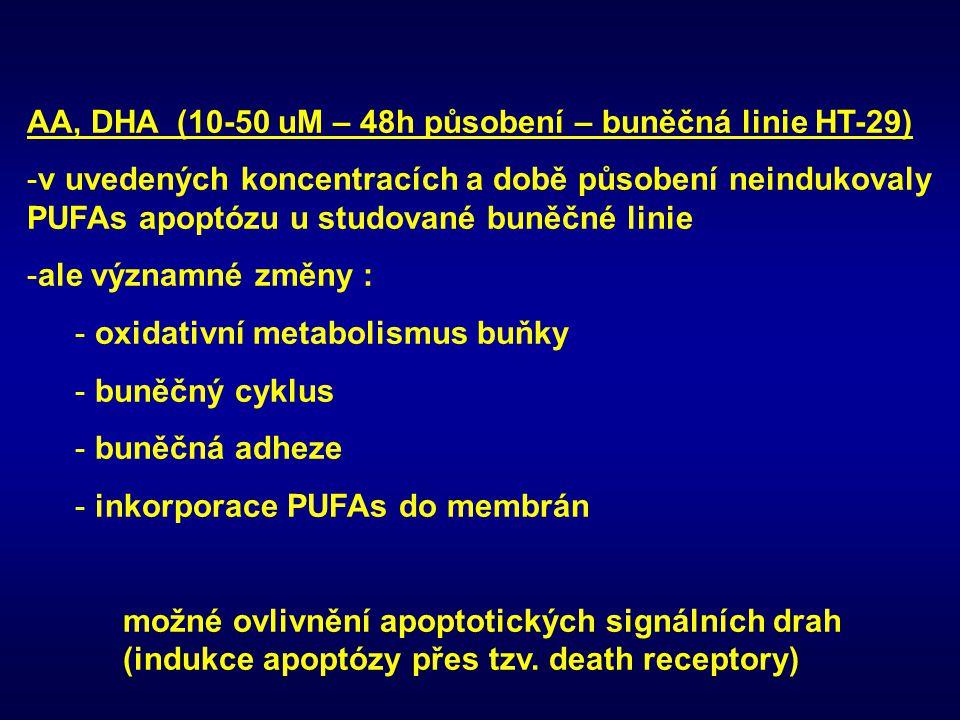 AA, DHA (10-50 uM – 48h působení – buněčná linie HT-29) -v uvedených koncentracích a době působení neindukovaly PUFAs apoptózu u studované buněčné lin