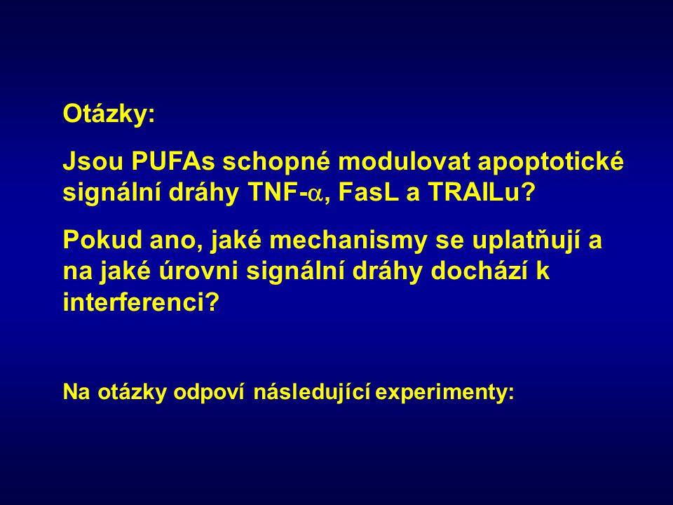 Otázky: Jsou PUFAs schopné modulovat apoptotické signální dráhy TNF- , FasL a TRAILu? Pokud ano, jaké mechanismy se uplatňují a na jaké úrovni signál