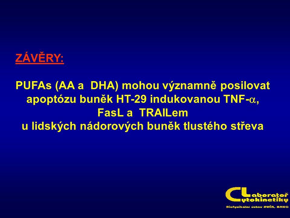 ZÁVĚRY: PUFAs (AA a DHA) mohou významně posilovat apoptózu buněk HT-29 indukovanou TNF- , FasL a TRAILem u lidských nádorových buněk tlustého střeva