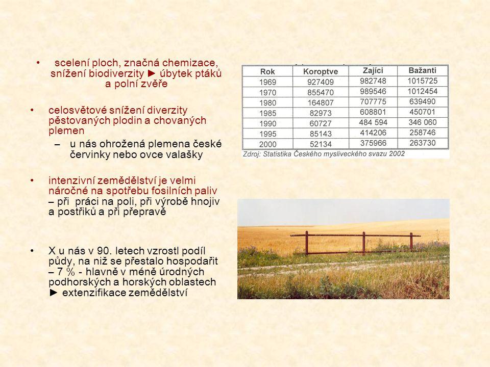 scelení ploch, značná chemizace, snížení biodiverzity ► úbytek ptáků a polní zvěře celosvětové snížení diverzity pěstovaných plodin a chovaných plemen –u nás ohrožená plemena české červinky nebo ovce valašky intenzivní zemědělství je velmi náročné na spotřebu fosilních paliv – při práci na poli, při výrobě hnojiv a postřiků a při přepravě X u nás v 90.