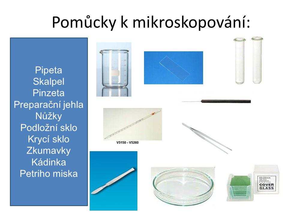 Pomůcky k mikroskopování: Pipeta Skalpel Pinzeta Preparační jehla Nůžky Podložní sklo Krycí sklo Zkumavky Kádinka Petriho miska