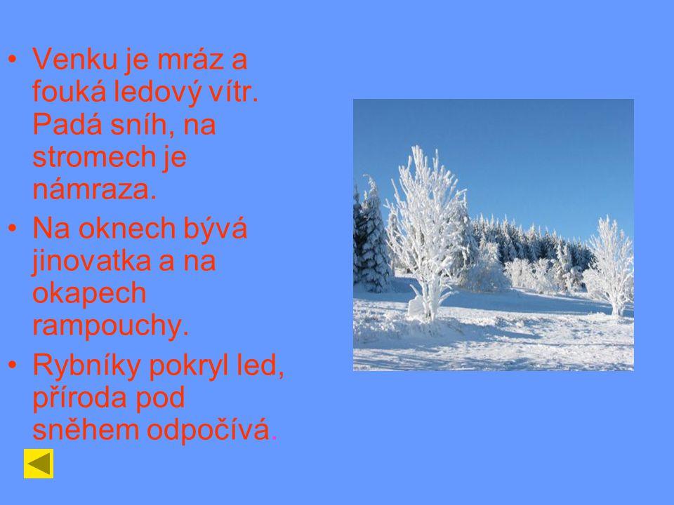 Venku je mráz a fouká ledový vítr.Padá sníh, na stromech je námraza.